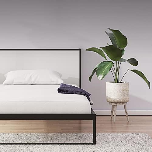 Signature Sleep Memoir 6' High-Density, Responsive Memory Foam Mattress - Bed-in-a-Box, Twin