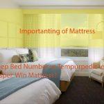 Sleep Number Bed vs Casper vs TempurPedic